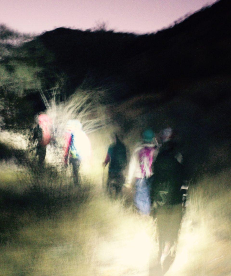 Night Trek picture